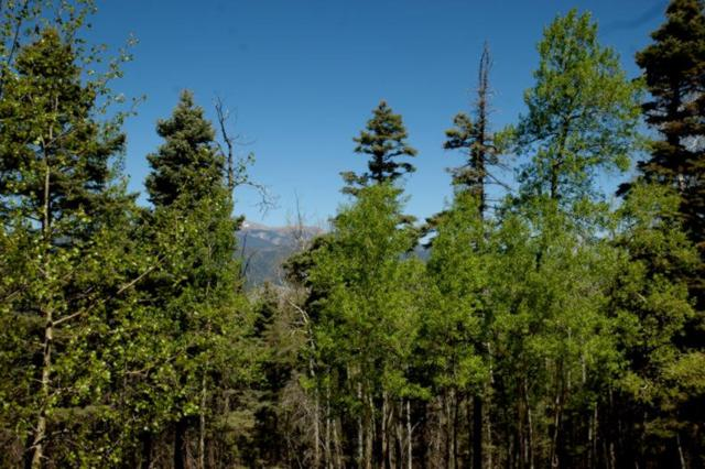 Lot 435 El Camino Real, Angel Fire, NM 87710 (MLS #102007) :: Page Sullivan Group | Coldwell Banker Mountain Properties