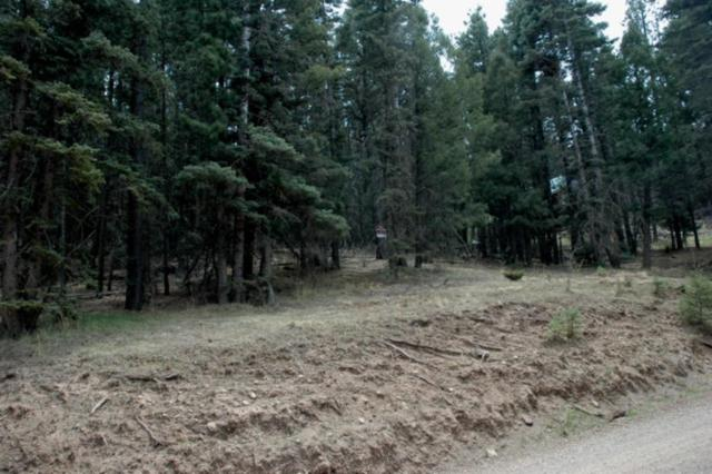 Lot 39 Vail Ave, Angel Fire, NM 87710 (MLS #102009) :: Page Sullivan Group | Coldwell Banker Mountain Properties