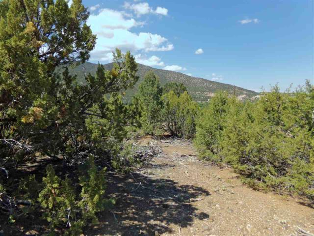 Lot 5 Monte Lindo, Ranchos de Taos, NM 87571 (MLS #102027) :: Page Sullivan Group | Coldwell Banker Lota Realty
