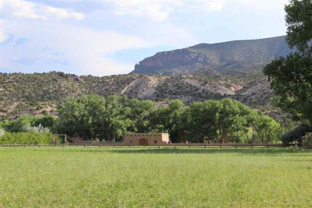 21495 Us Highway 84, Abiquiu, NM 87510 (MLS #102035) :: Page Sullivan Group | Coldwell Banker Lota Realty