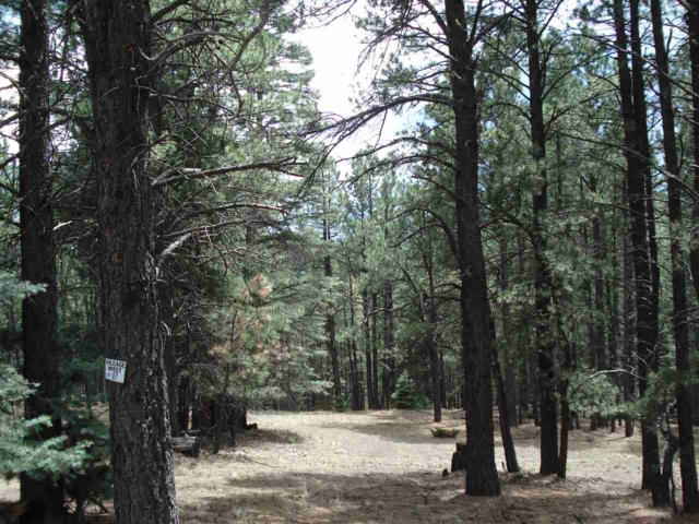 Lot 87 San Juan Dr., Angel Fire, NM 87710 (MLS #102048) :: Page Sullivan Group | Coldwell Banker Mountain Properties