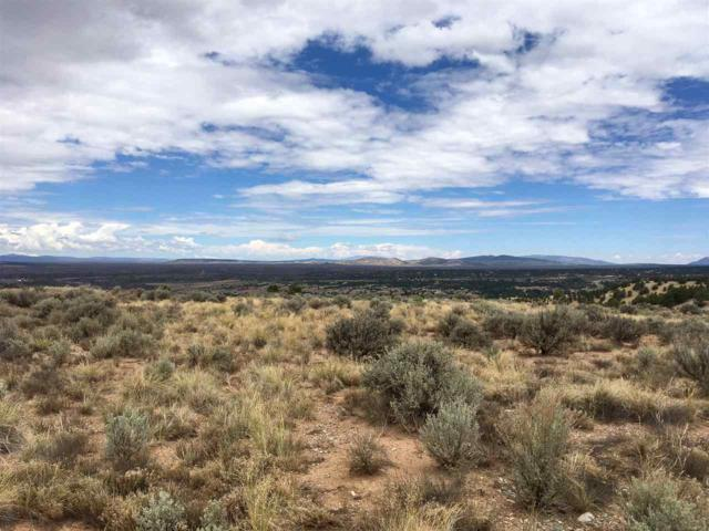Lot 22 Hoyo Rd, Arroyo Hondo, NM 87513 (MLS #102061) :: Page Sullivan Group | Coldwell Banker Lota Realty