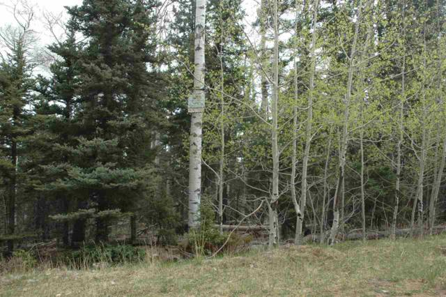 Lot 2 Sr 120, Angel Fire, NM 87710 (MLS #102063) :: The Chisum Realty Group