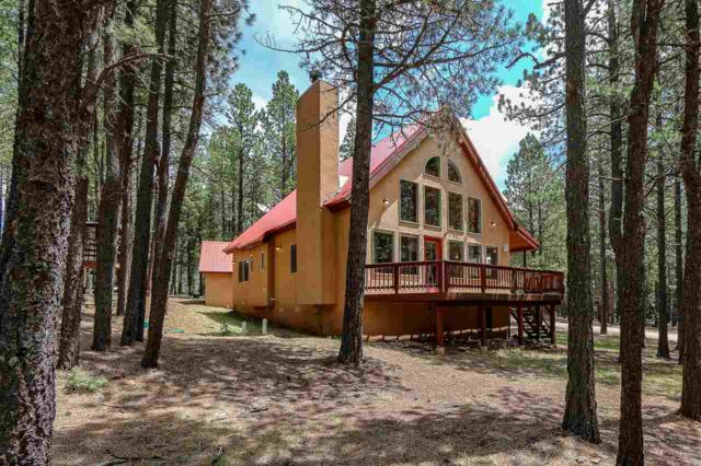 28 Maxwell Way, Angel Fire, NM 87710 (MLS #102085) :: Page Sullivan Group | Coldwell Banker Lota Realty