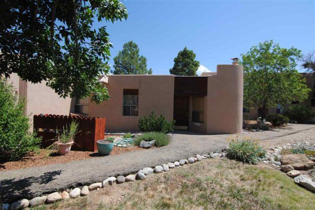88 Highway 150, El Prado, NM 87529 (MLS #102106) :: Page Sullivan Group   Coldwell Banker Lota Realty