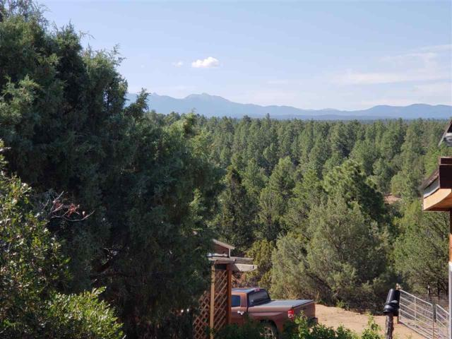 100 Cactus Road, Chamisal, NM 87521 (MLS #102109) :: The Chisum Realty Group