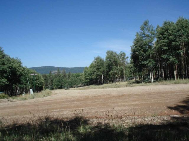 Lot 1019 Starshine Overlook, Angel Fire, NM 87710 (MLS #102116) :: Angel Fire Real Estate & Land Co.