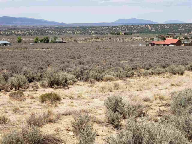 SW corner Coyote Loop And Calle Conejo, Arroyo Hondo, NM 87513 (MLS #102125) :: Page Sullivan Group | Coldwell Banker Lota Realty