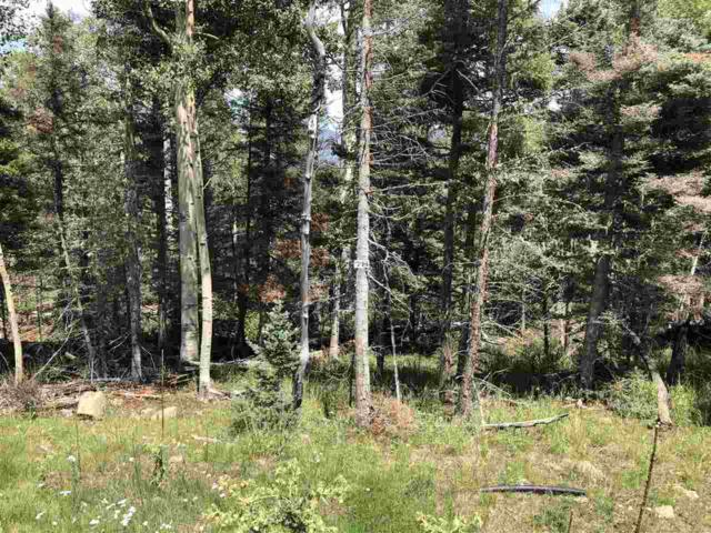 78 Via De Maria, Angel Fire, NM 87710 (MLS #102141) :: Page Sullivan Group | Coldwell Banker Mountain Properties