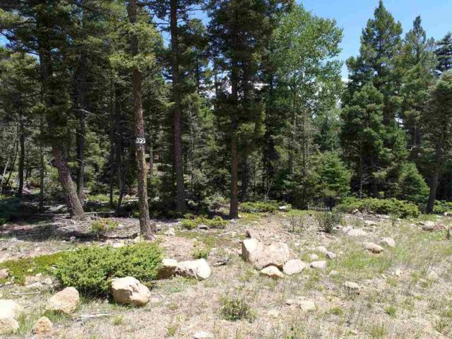97 Zia Rd, Angel Fire, NM 87710 (MLS #102144) :: Page Sullivan Group | Coldwell Banker Mountain Properties