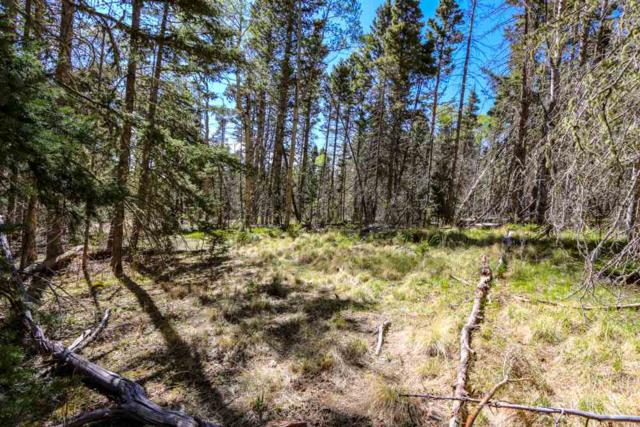 Lot 1258 High Needle Overlook, Angel Fire, NM 87710 (MLS #102160) :: Angel Fire Real Estate & Land Co.