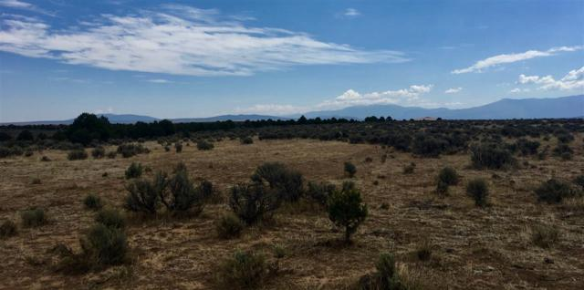 Servilleta Subdivision, Tres Piedras, NM 87577 (MLS #102169) :: Page Sullivan Group | Coldwell Banker Mountain Properties