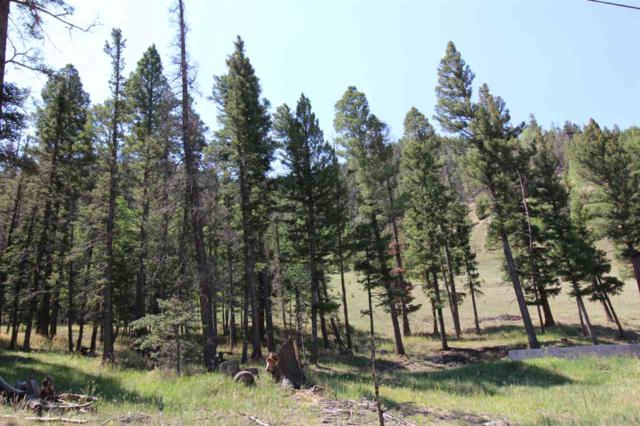 Lot 59 Hill Crest Addition, Red River, NM 87558 (MLS #102185) :: Page Sullivan Group