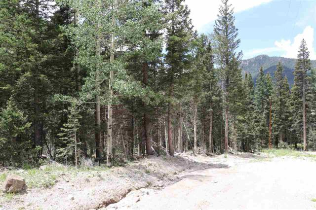 Lot 2 Zaps Road, Taos Ski Valley, NM 87525 (MLS #102191) :: The Chisum Realty Group