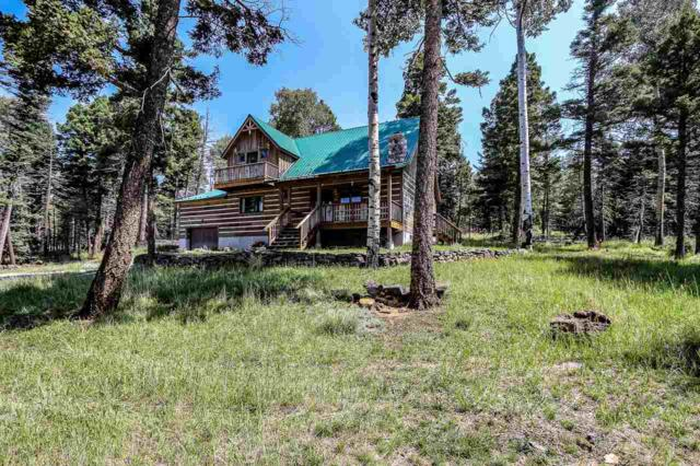 83 Cheerful Way, Angel Fire, NM 87710 (MLS #102197) :: The Chisum Realty Group
