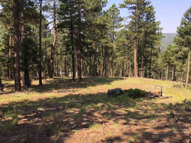 1561 Luna Dr, Angel Fire, NM 87710 (MLS #102203) :: Page Sullivan Group | Coldwell Banker Mountain Properties