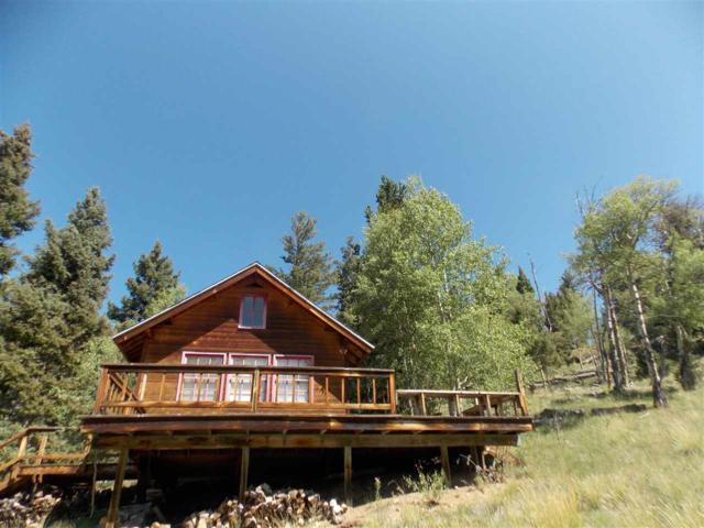 27 Sangre De Cristo, Red River, NM 87558 (MLS #102224) :: The Chisum Realty Group