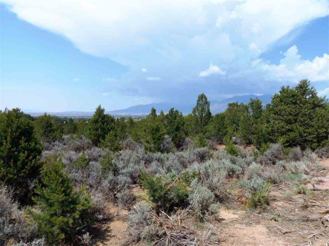 2/10 M Sagebrush Trail, Taos, NM 87571 (MLS #102243) :: The Chisum Realty Group