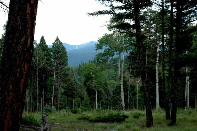 Lot 1480 Peralta Circle, Angel Fire, NM 87710 (MLS #102251) :: The Chisum Realty Group