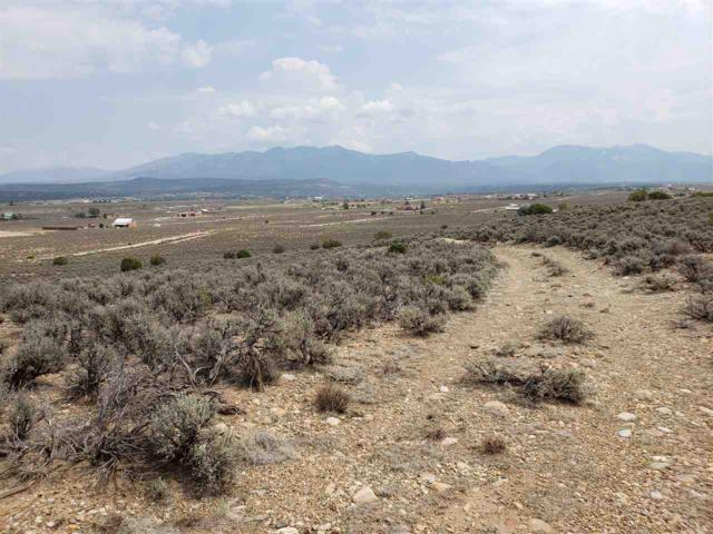 Lot 12 B Coyote Loop, Arroyo Hondo, NM 87513 (MLS #102265) :: Angel Fire Real Estate & Land Co.