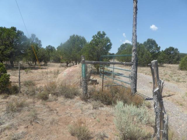 38062 Hwy 285, Tres Pidras, NM 87577 (MLS #102269) :: Page Sullivan Group | Coldwell Banker Lota Realty