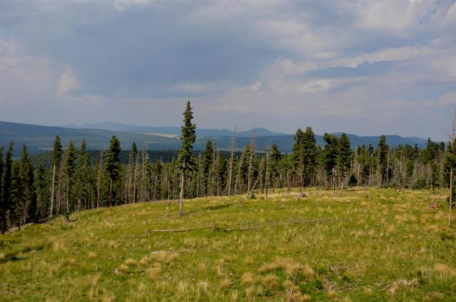 Lot 24 Hinz Dr., Angel Fire, NM 87710 (MLS #102282) :: Page Sullivan Group | Coldwell Banker Mountain Properties