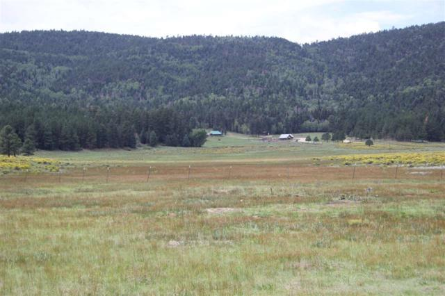 TBD Smokey Bear Court, Angel Fire, NM 87710 (MLS #102290) :: Page Sullivan Group | Coldwell Banker Mountain Properties