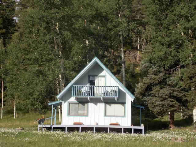 491 Hwy 578, Red River, NM 87558 (MLS #102294) :: The Chisum Realty Group