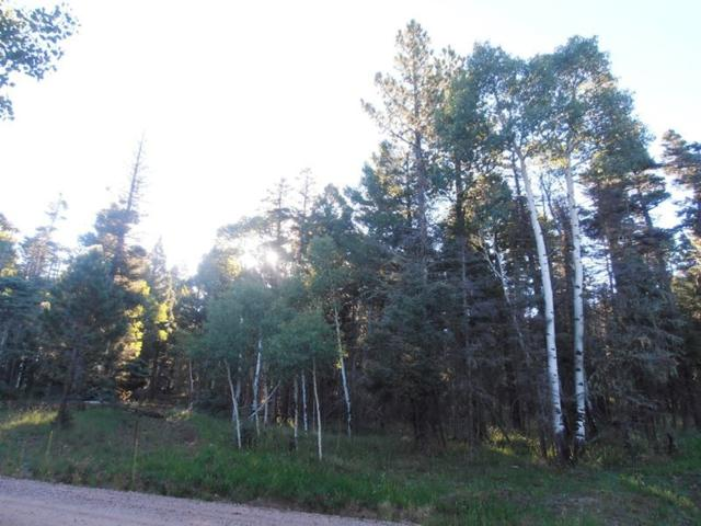 1562 Luna Dr, Angel Fire, NM 87710 (MLS #102328) :: Page Sullivan Group | Coldwell Banker Mountain Properties