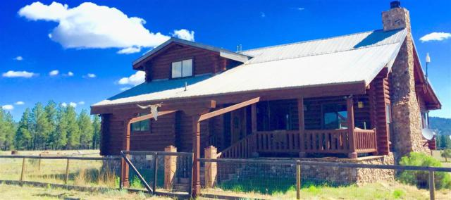 Us Forest Rd 42, Tres Piedras, NM 87577 (MLS #102332) :: The Chisum Realty Group