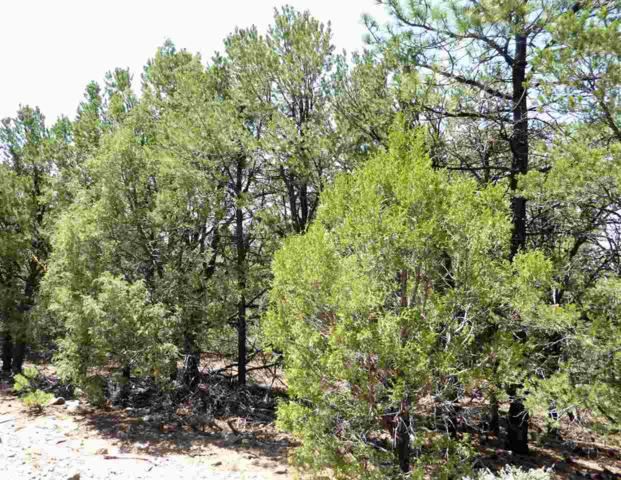 31 and 32 Lower Pinabete Rd, Questa, NM 87556 (MLS #102345) :: The Chisum Realty Group