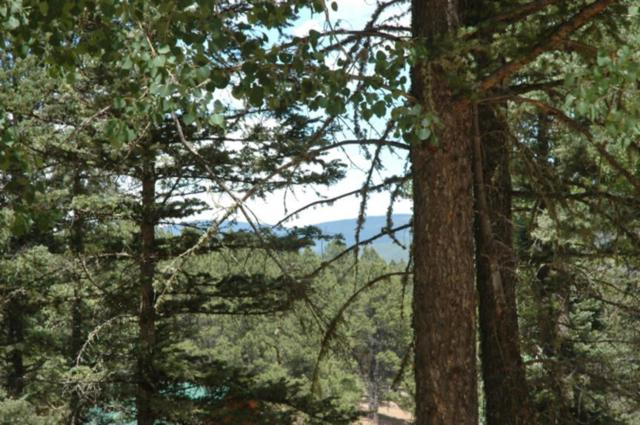 Lot 1261 San Andres Circle, Angel Fire, NM 87710 (MLS #102364) :: The Chisum Realty Group