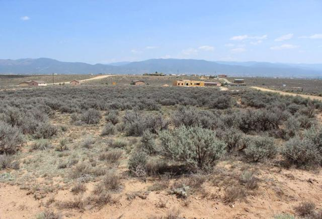 6 Camino Tejon, El Prado, NM 87529 (MLS #102370) :: Page Sullivan Group | Coldwell Banker Mountain Properties
