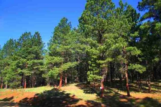 Lot 120 San Juan, Angel Fire, NM 87710 (MLS #102374) :: Page Sullivan Group | Coldwell Banker Mountain Properties