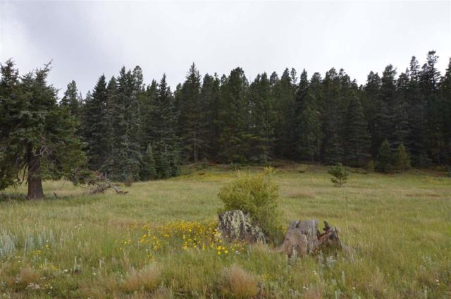 Lot 17 Coyote Creek Dr, Angel Fire, NM 87710 (MLS #102375) :: The Chisum Realty Group