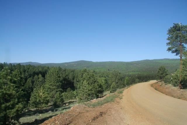 Lot 1213 Colonial Trail, Angel Fire, NM 87710 (MLS #102393) :: Angel Fire Real Estate & Land Co.