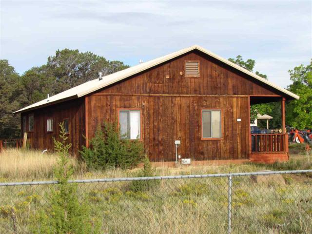 81 Pinon, Cimarron, NM 87714 (MLS #102398) :: Page Sullivan Group | Coldwell Banker Mountain Properties