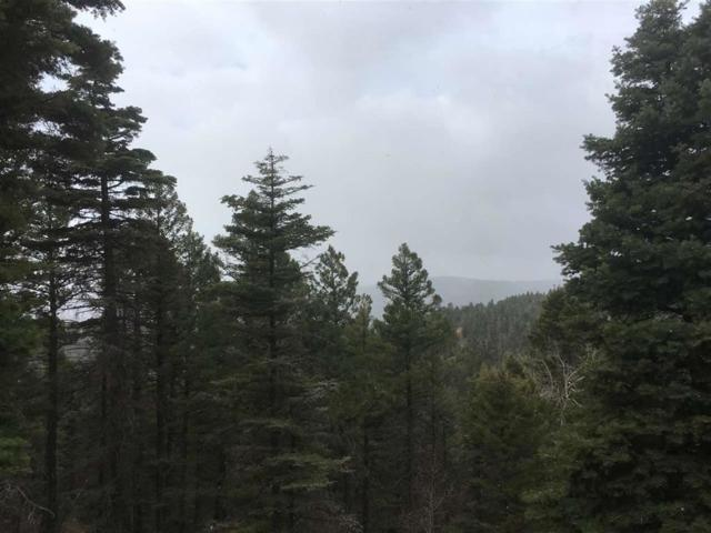 568 El Camino Real, Angel Fire, NM 87710 (MLS #102399) :: Angel Fire Real Estate & Land Co.