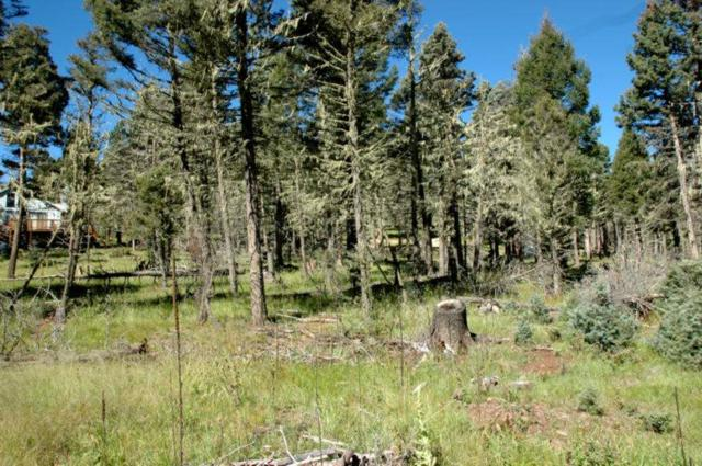 Lot 16 Alpine Lake Way, Angel Fire, NM 87710 (MLS #102409) :: The Chisum Realty Group