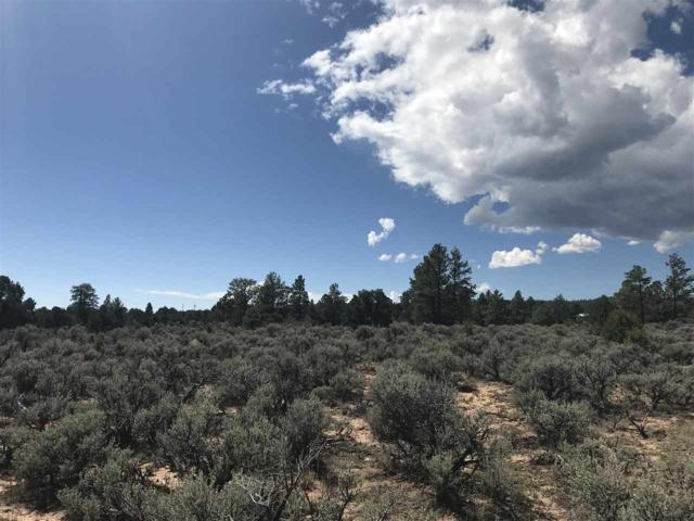 Block B Lots 20 21 22 23, Tres Piedras, NM 87577 (MLS #102410) :: Page Sullivan Group | Coldwell Banker Mountain Properties