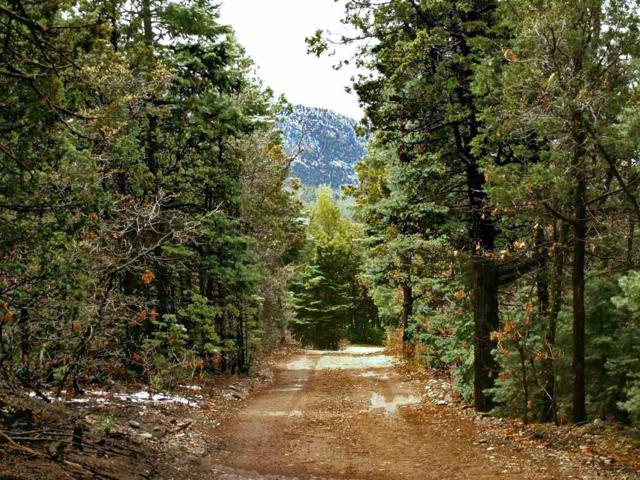 Tract B Marquez Road, Taos, NM 87571 (MLS #102421) :: Page Sullivan Group | Coldwell Banker Mountain Properties