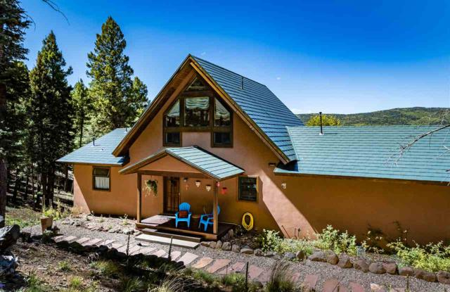 49 Vista Del Valle, Angel Fire, NM 87710 (MLS #102442) :: The Chisum Realty Group