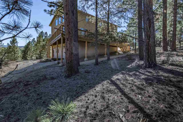 60 Woodlands, Angel Fire, NM 87710 (MLS #102453) :: The Chisum Realty Group