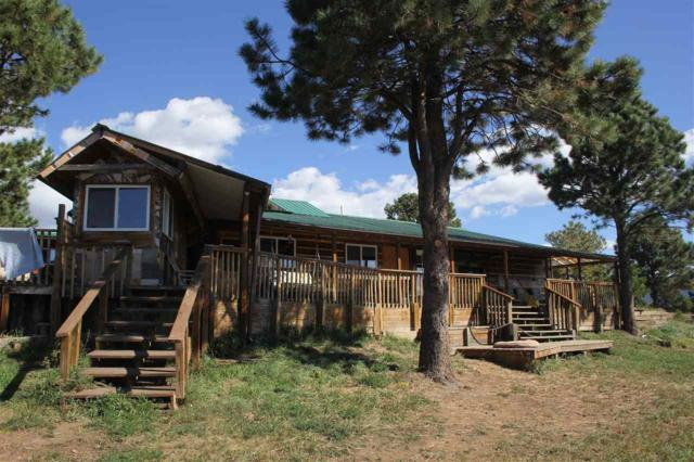 20 Norte Rd, Eagle Nest, NM 87718 (MLS #102460) :: Page Sullivan Group | Coldwell Banker Mountain Properties