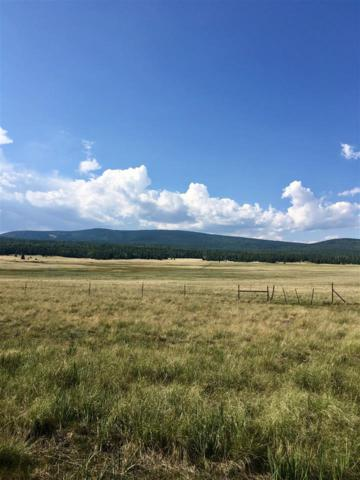 40 acres Highway 120, Angel Fire, NM 87710 (MLS #102466) :: Page Sullivan Group | Coldwell Banker Mountain Properties