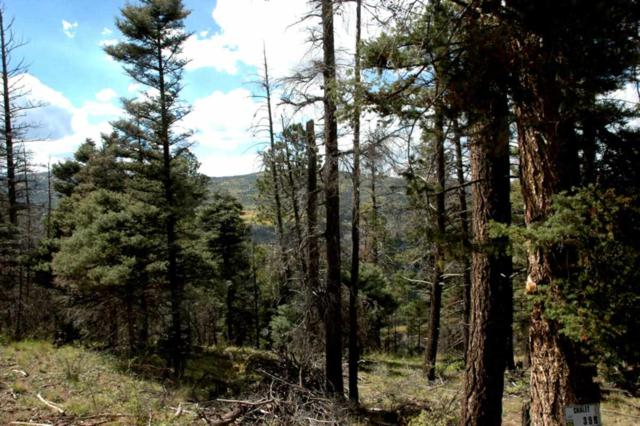 Lot 399 Vail Loop, Angel Fire, NM 87710 (MLS #102477) :: The Chisum Realty Group