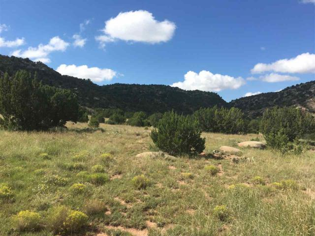 State Rd 419, Tremintina, NM 87558 (MLS #102487) :: Page Sullivan Group | Coldwell Banker Mountain Properties