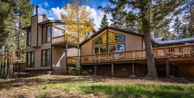24 Meadowbrook Terrace, Angel Fire, NM 87710 (MLS #102516) :: The Chisum Realty Group