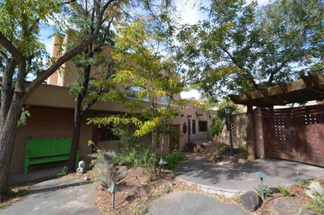 215 Ranchitos Rd, Taos, NM 87571 (MLS #102520) :: Page Sullivan Group | Coldwell Banker Mountain Properties