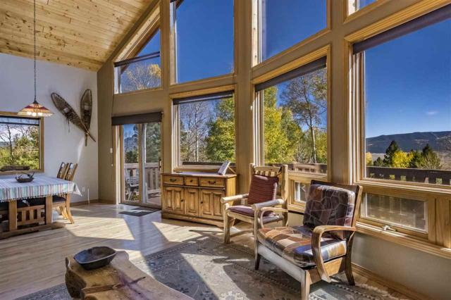 225 Taos Pines Ranch Rd, Angel Fire, NM 87710 (MLS #102532) :: The Chisum Realty Group